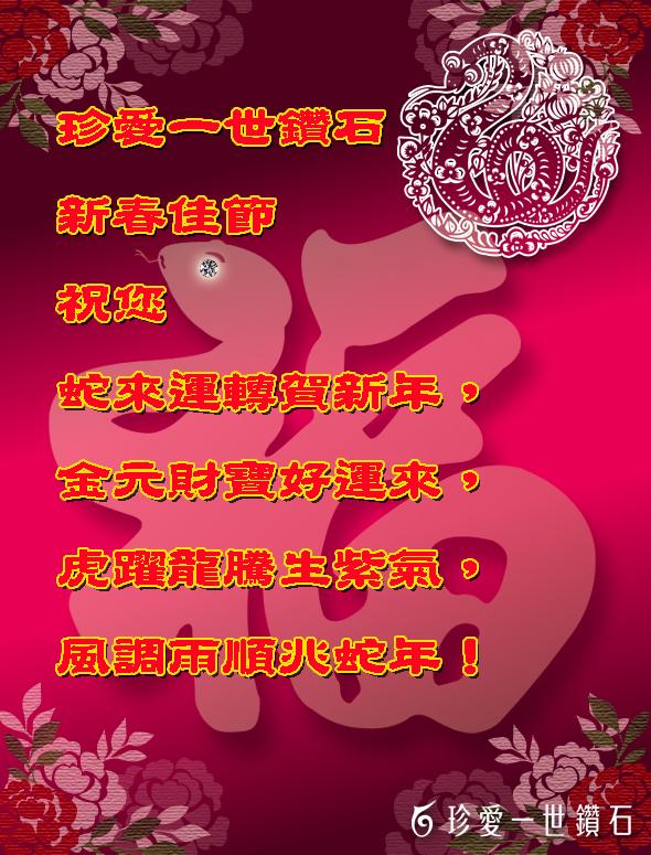 珍愛一世鑽石-2013-品牌發展